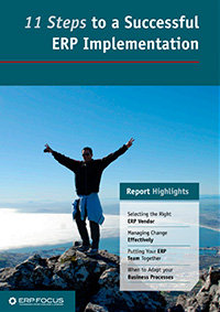 erp implementation - thumbnail 200