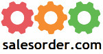 salesorder.com erp vendor logo